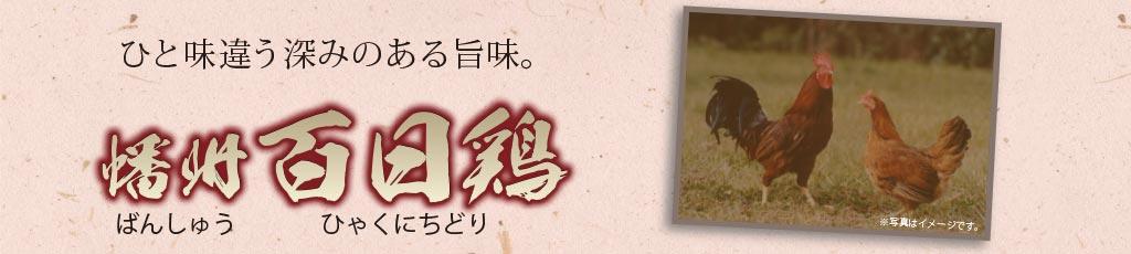 ひと味違う深みのある旨味。播州百日鶏。